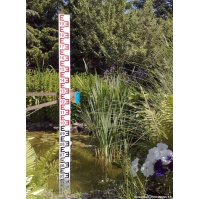Water Level Staff Gauge (1mb)